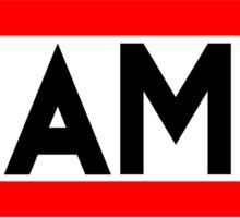 Flamer Sticker