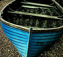 Herb Boat by webgrrl