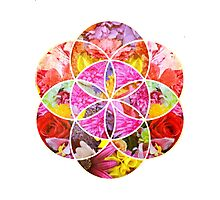 Flowers Geometric Collage Photographic Print