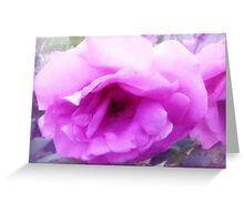 *Lovely Lilactime Rose from my Garden* Greeting Card