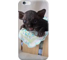 Baby devil black sphynx cat iPhone Case/Skin