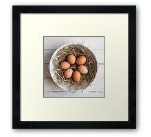eggs in hay Framed Print