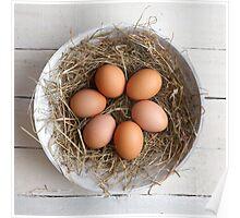 eggs in hay Poster