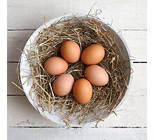 eggs in hay Photographic Print