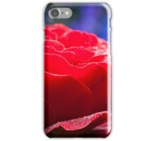 Red rose in English country garden iPhone Case/Skin