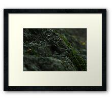 Mossy Rock Framed Print