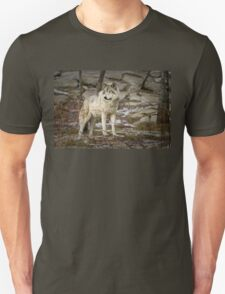 Timber Wolf on Guard T-Shirt