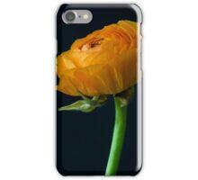 Yellow ranunculus flower head. iPhone Case/Skin