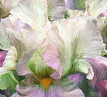 Iris Moods 4 by Carol  Cavalaris