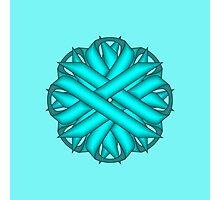 Light Blue / Tea Flower Ribbon Photographic Print