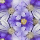 Purple Daisies by Marilyn Cornwell