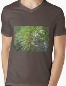 Spruce needles are really green Mens V-Neck T-Shirt