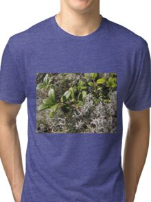 moss and lingonberry leaves in the green Tri-blend T-Shirt