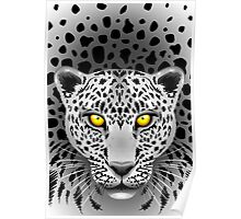 White Leopard with Yellow Eyes Poster