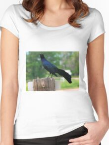 Count Grackula Women's Fitted Scoop T-Shirt