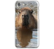 Lovely Day For A Dip iPhone Case/Skin
