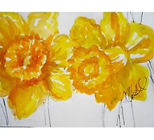 Daring Daffodils Photographic Print