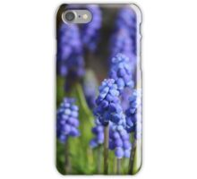 Blue Abba Di Abba Da iPhone Case/Skin