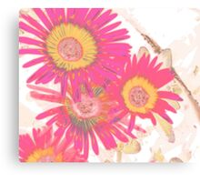 Pink Flowers in Summer Canvas Print