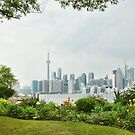 An Island Garden with a View by Marilyn Cornwell