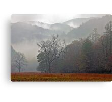 Cataloochee Dawn Canvas Print