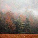 Misty Fall Morn by Gary L   Suddath