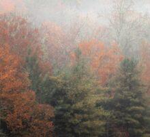 Misty Fall Morn Sticker