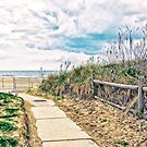A Walk to the Beach by Susan Werby