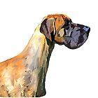 Great Dane by Karen Harding