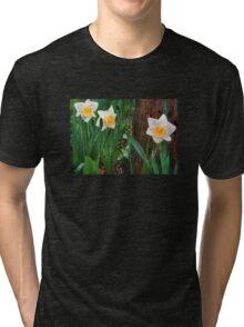 Spring Trio Tri-blend T-Shirt