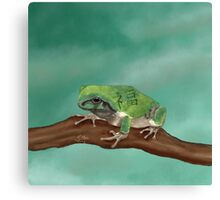 Fortune Frog on a Teal Sky Canvas Print