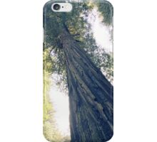 Magnificence iPhone Case/Skin