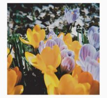 Springtime Crocuses - Diana 120mm Photograph One Piece - Short Sleeve