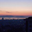 The sunset  by rasim1