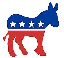 Democrat  Photographic Print