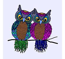 Owls in love colour Photographic Print
