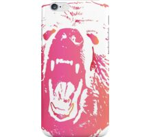 Colorful Bear  iPhone Case/Skin