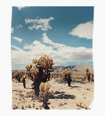 Anza-borrego desert  Poster