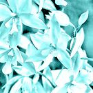 Cascading orchids - Teal by PhotosByHealy