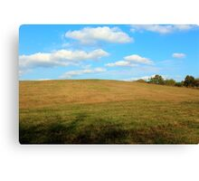 Blue Sky Over Pasture Canvas Print