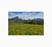 Meadow of Dandelions in the San Juan Mountains Unisex T-Shirt