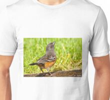 Spotted Towhee Looking Up Unisex T-Shirt