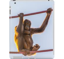 Hangin' Out iPad Case/Skin