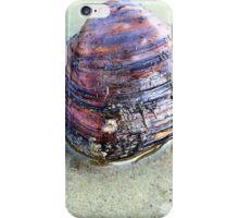 Clam Up iPhone Case/Skin
