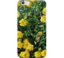 Bush of yellow flowers. iPhone Case/Skin