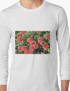 Beautiful red flowers in the garden. Long Sleeve T-Shirt