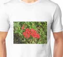 Beautiful red flowers in the garden. Unisex T-Shirt