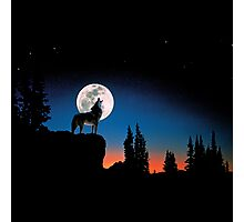 Rembulan : Howling Wolf, Crying To The Moon Photographic Print