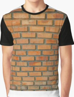 wall Graphic T-Shirt