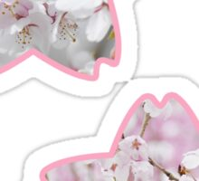 Sakura Sticker Set of 2 Sticker